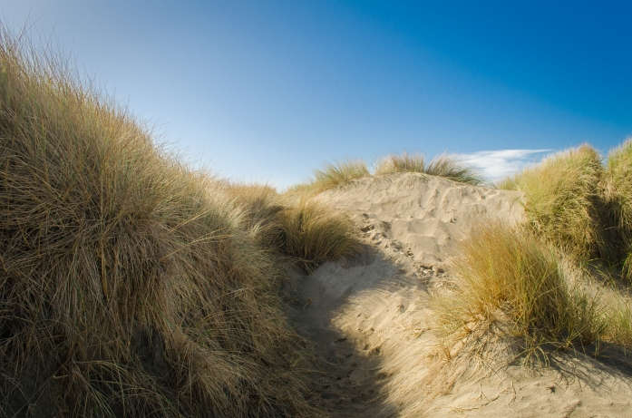 South Jetty 066