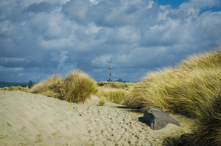 South Jetty 074