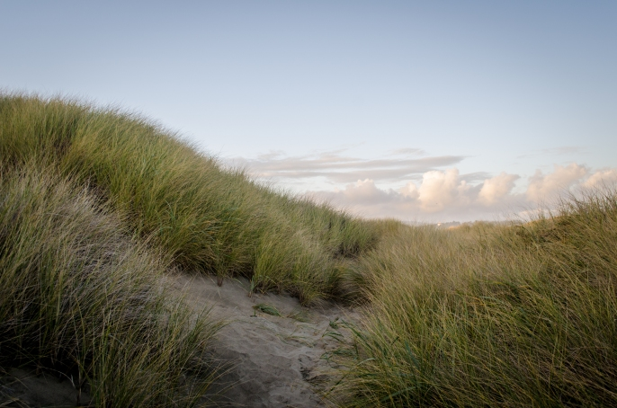South Jetty 181
