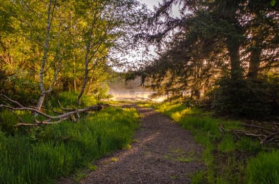 Siletz Trail -0132